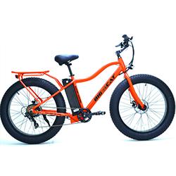Big Cat Electric Bicycle