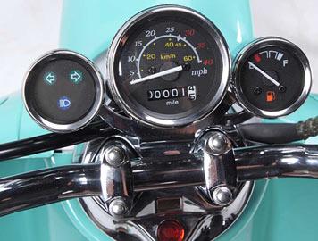 wolf islander speedometer detail